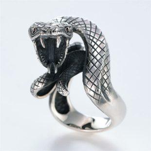 宝石ルビーを使ったヘビ・爬虫類のデザインが特徴的な銀風指輪の商品写真です。型番:GP101005-01 画像その1